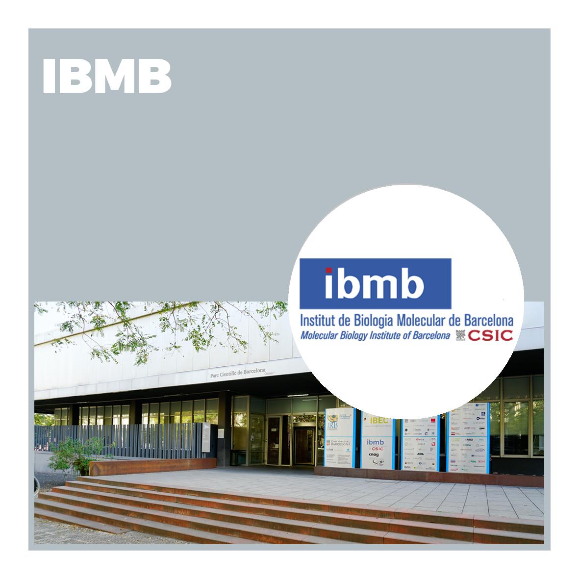 Instituto de Biología Molecular de Barcelona (IBMB)