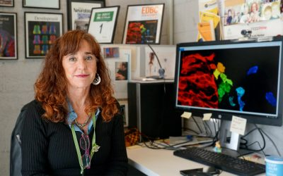Elisa Martí, científica del IBMB-CSIC, escogida nuevo miembro de la EMBO