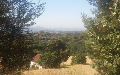Encuentran compuestos químicos provenientes del tráfico de Barcelona en el Parque Natural del Montseny
