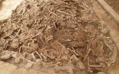 La genòmica revela que la febre paratifoide va devastar  les tropes del rei d'Espanya durant el setge de Barcelona de 1652
