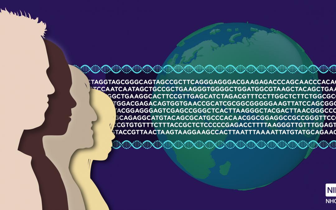 Un nuevo marco ético mundial para la investigación del ADN antiguo