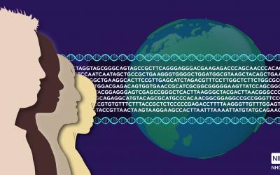 Una nou marc ètic mundial per a la recerca de l'ADN antic